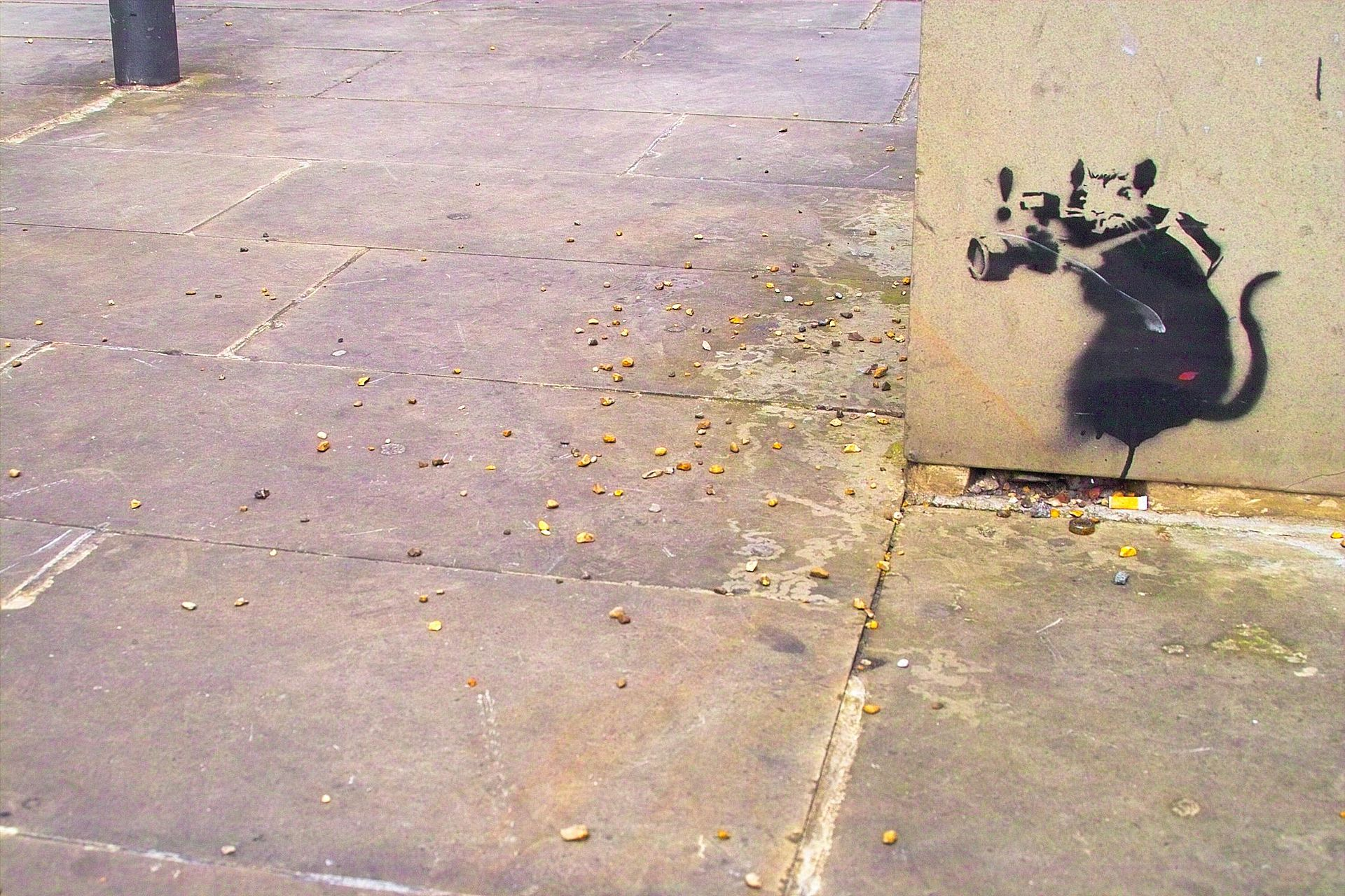 1920px-Banksy_-_Rat_Photographer